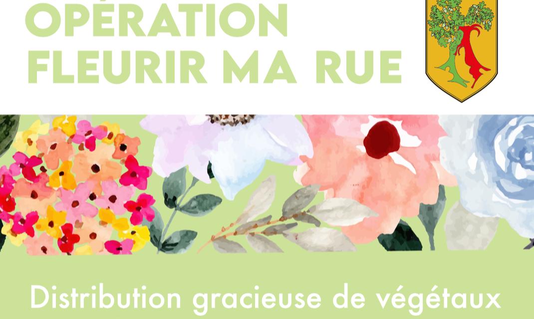 Opération «Fleurir ma Rue»
